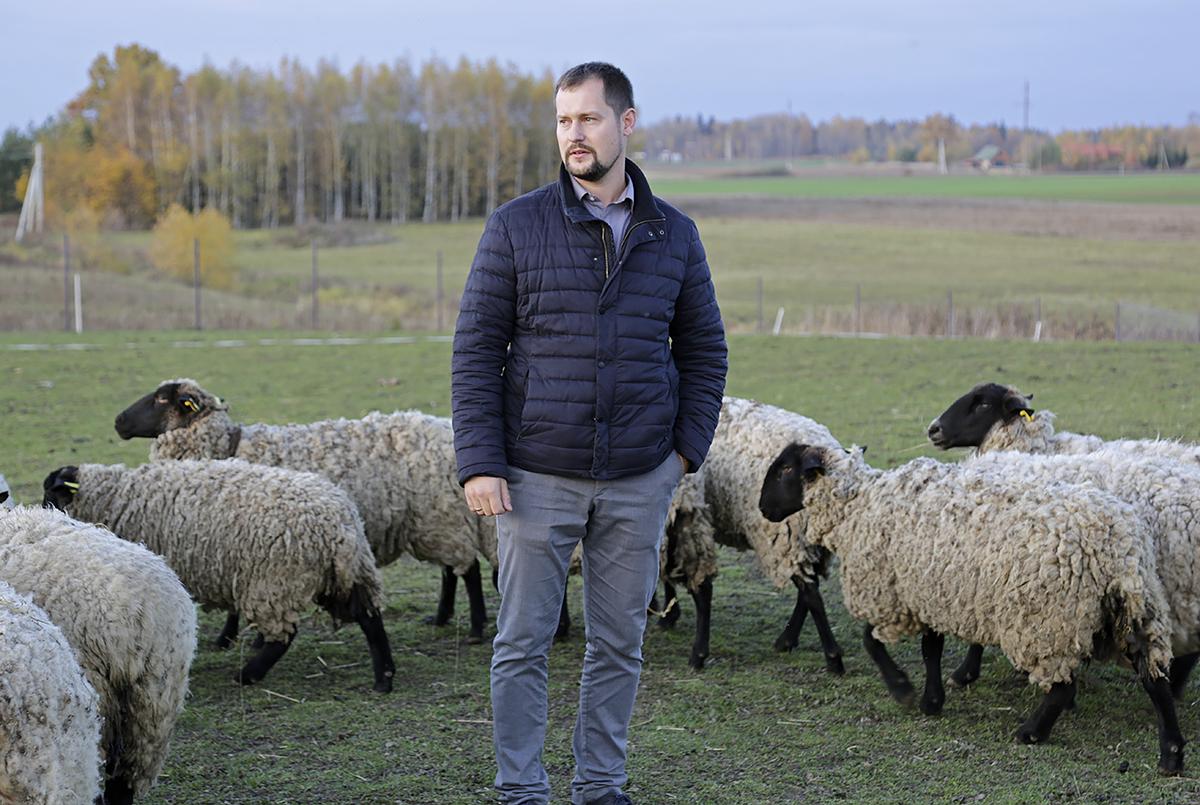 """Ūkininkas Jonas Kurtinaitis, pasinaudojęs """"Parama smulkiesiems ūkiams"""", įsigijo 60 avių."""